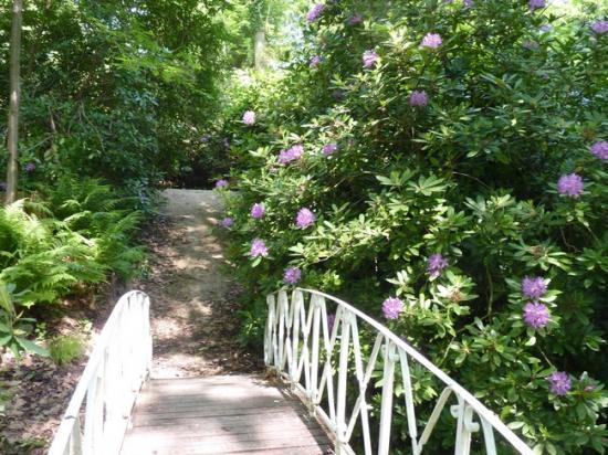Parc de Chateauneuf sur Loire