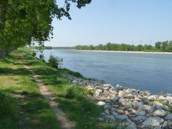 Balade en bord de Loire à Jargeau