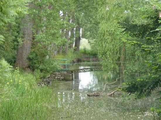 Férolles: la rivière à Babille